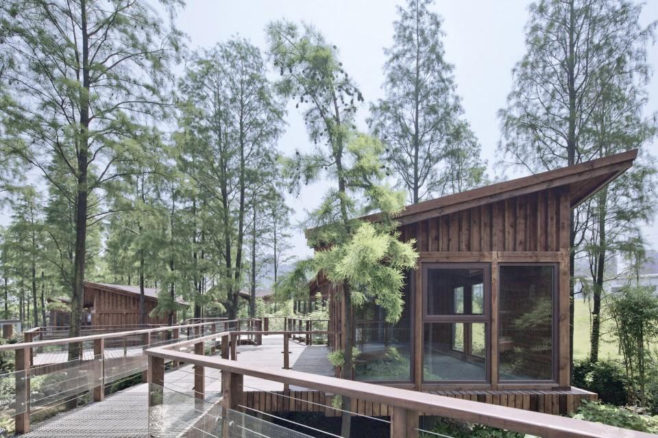 5米到3米;木屋之间连接有栈桥式的空中平台,在这个栈桥平台上貌似随意