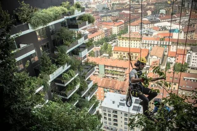 """南京将建全亚洲第一座""""垂直森林""""!"""