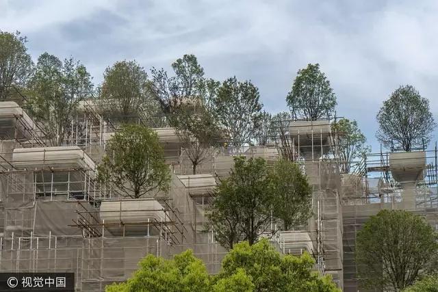 """上海惊现""""古巴比伦空中花园""""!建成后又是一个地标!"""